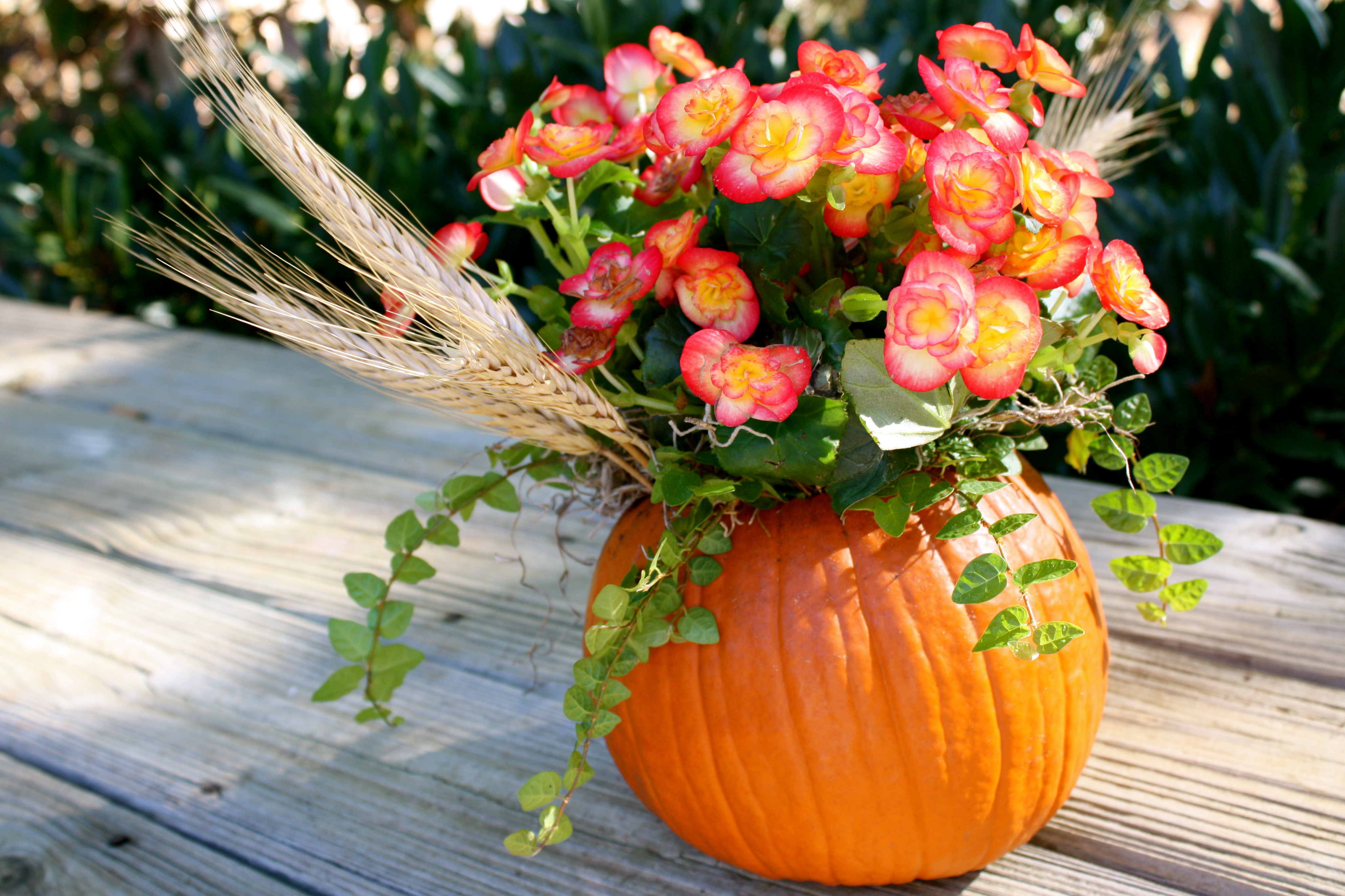 Tablescape - Potted autumn flowers ...